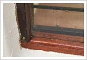 Ancor Complex Wooden Window Frames Close-up