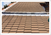 Roof Repair and Sealing